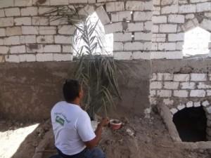 بالصور.. مسؤول حكومي يفتح قبر والديه وينام ساعة بجانبهما: «شغلتني الدنيا عنهما»