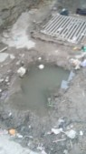 بالصور ... مناظر ينفر كل من يراها في حي معصوم - شارع مسجد حمزه بن عبد المطلب بالزرقاء