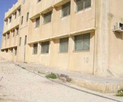 «الأغنام» تشارك طلاب مدرسة حكومية في عمان طابورهم الصباحي