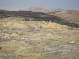 سكان في الراشدية: مصنع الاسمنت ألحق ضررا بالغطاء النباتي لا يمكن تعويضه