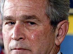 وظيفة في متجر بانتظار بوش