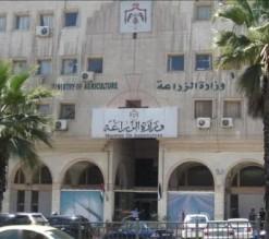 مشاجرة عنيفة وإصابات خلال اجتماع بجناح الوزير في وزارة الزراعة