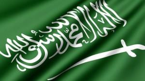 السعودية: تعيين الأمير محمد بن سلمان ولياً للعهد