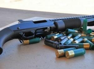 ضبط 4 مسدسات وخرطوش و