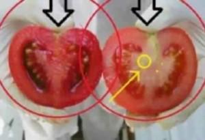 هل خطر في بالكم يوما انكم تأكلون السموم طيلة حياتكم! انتبهوا !