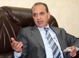 المصري يوضح أسس اختيار أعضاء مجالس المحافظات والبلديات المُعينين
