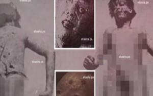 فيديو للوحدة 731 اليابانية .. قصة يستحسن أن لا تعرفها أبداً!