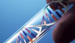 السلطات الكندية تستخدم اختبار الحمض النووي لتحديد جنسية المهاجرين