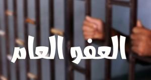 توقعات بإصدار العفو العام الأربعاء المقبل