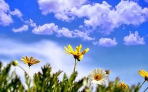 الثلاثاء .. ارتفاع على درجات الحرارة وطقس ربيعي نهاراً
