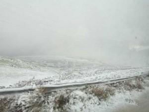 بالصور.. الثلوج تكسو مرتفعات الطفيلة واغلاق جزئي لبعض الطرق في المناطق الجنوبية