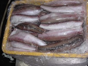 الغذاء والدواء توضح حول ما تم تداوله بخصوص الفيليه و السمك مقطوع الرأس.