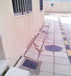 تشققات في مبنى مدرسة الحصن المختلطة تهددها بالانهيار رغم حداثة تسلمها