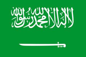 """أربعة من قادة العرب يعقدون اجتماع """"مكاشفة"""" في الرياض"""