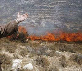 حريق إسرائيلي كبير يمتدّ إلى الأراضي الأردنية والمتضررون يطالبون بتعويض