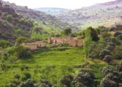 تجميد العمل بنظام المخالفات المائية على مزارعي وادي الأردن