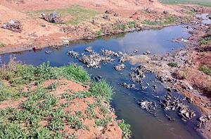 وصول مياه عادمة الى سد الوالة تشكل مكرهة صحية وبيئية