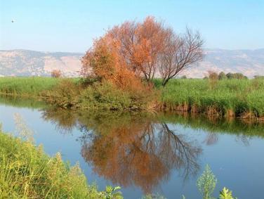 """الاحتلال يحول نهر الأردن إلى """"شبه ميت"""""""
