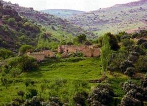 الأردن يؤسس خمس محميات طبيعية مع نهاية 2012