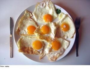 علماء بريطانيون ينصحون بتناول البيض بعد يومين من إنتاجه