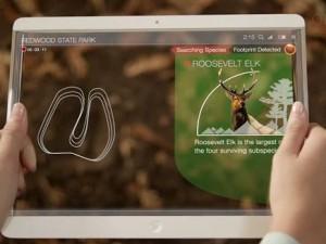 سامسونغ وكورنينغ يدشنان مشروعاً لإنتاج شاشات مرنة