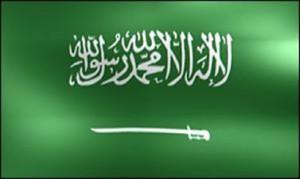 مسيرة مليونية تعد لها المعارضة السعودية في 3/11 ضد النظام ..