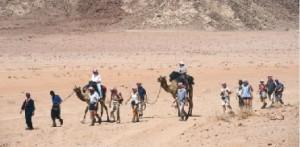 تجاوزات ومخالفات في منطقة رم السياحية تحرم الخزينة من عائدات مالية