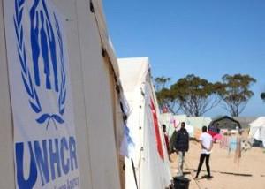 عائلات فلسطينية في ليبيا تطالب اللجوء الى الأردن اوسوريا اولبنان