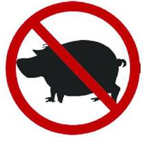 مطالبة بالتخلص من 600 رأس خنزير في مزرعتين بالكرك
