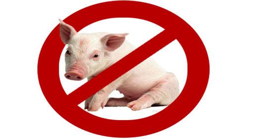 الصحة: فايروس انفلونزا الخنازير موجود بأجوائنا وهناك خطط لمواجهته