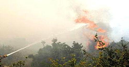تضرر1250 دونما منذ معاهدة السلام.. إسرائيل تدعي ان ارتفاع الحرارة وراء حرائق الأغوار