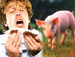 الاجمالي 1032..تسجيل 399 اصابة بانفلونزا الخنازير خلال اسبوع