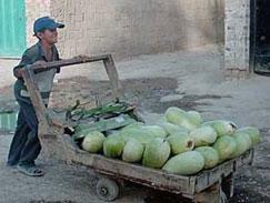 32 ألفا الأطفال العاملون في المملكة و70% من أسرهم تحت خط الفقر